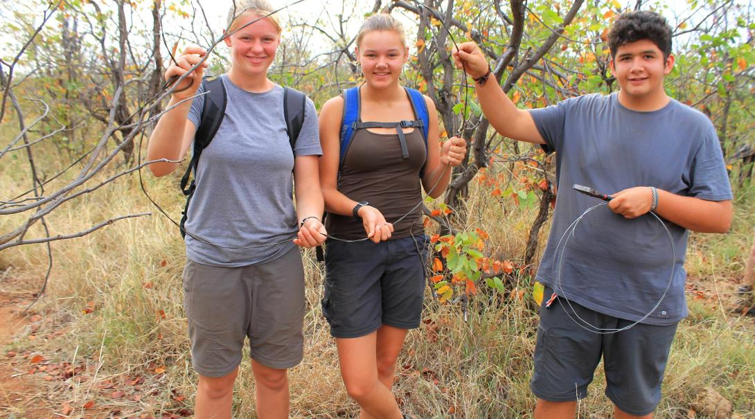 Teenage volunteers removing snares to protect wildlife in Botswana.